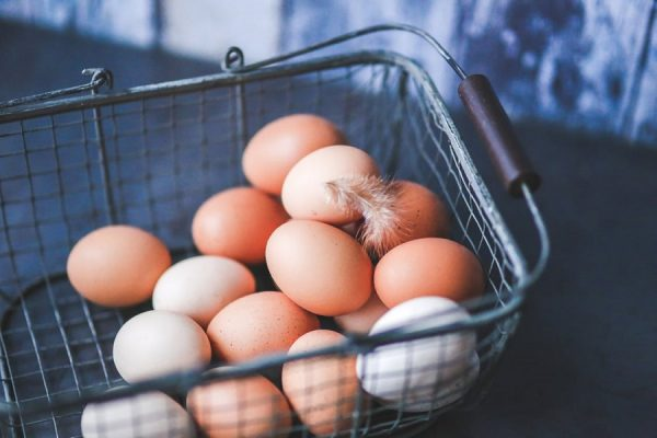 How to Start Eggs Supply Business in Nigeria